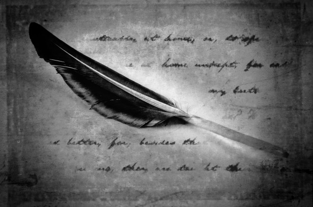 """Black Feather"" by George Hodan; public domain"