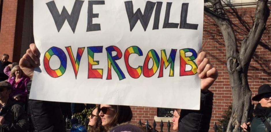 """""""We Will Overcomb"""" (2017 Boston Women's March) © Holly Angell; used with permission"""