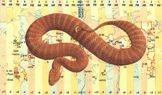 Collage of a snake on a map